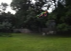 Tricopter Motion Pic1